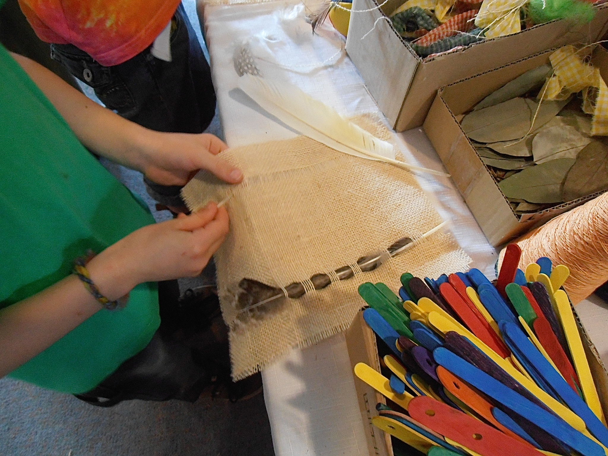 Weaving with Feathers
