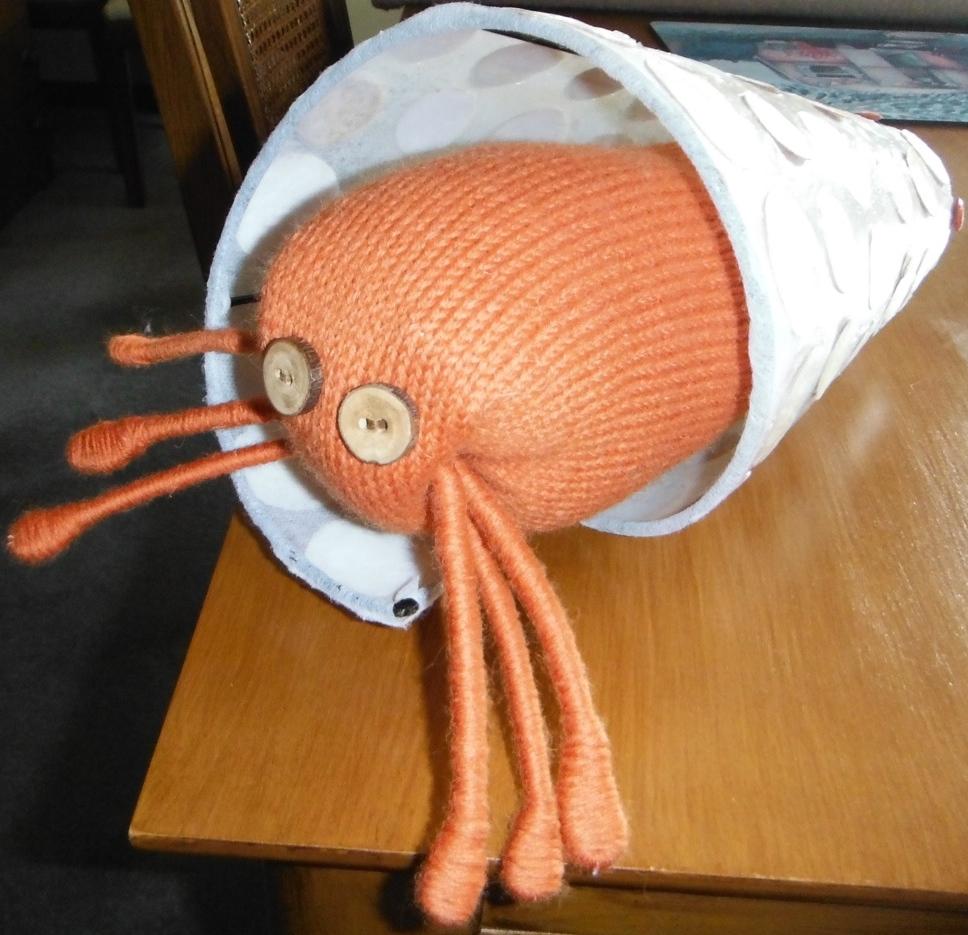 Debbie's hermit crab